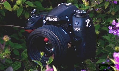 Review đánh giá Nikon D7000