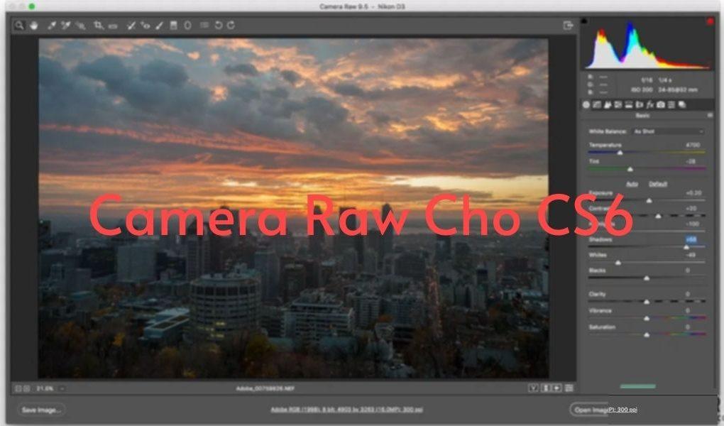 Camera Raw CS6