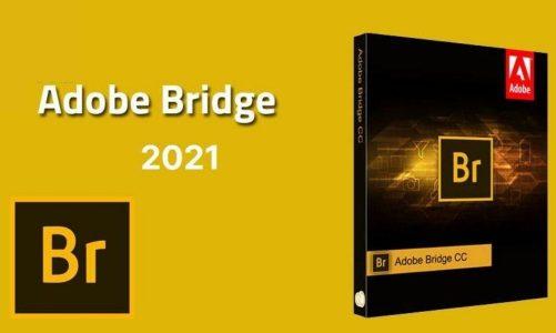 Download Adobe Bridge CC 2021 Full Miễn Phí Bản Chuẩn