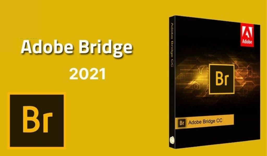 adobe bridge cc 2021